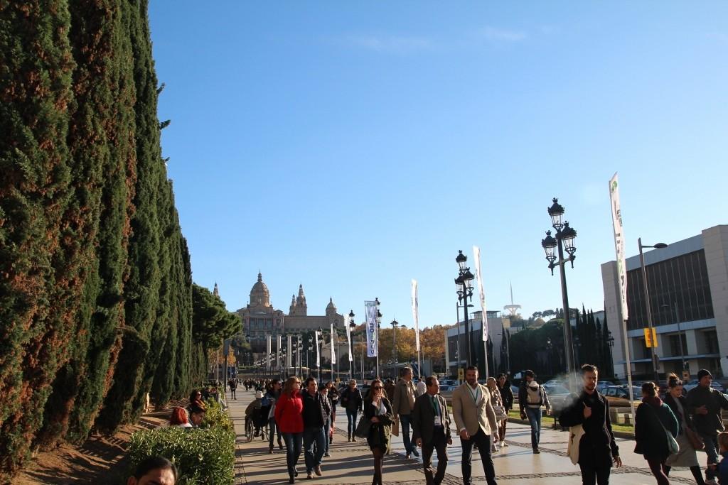 Plaça d'Espanya (28)