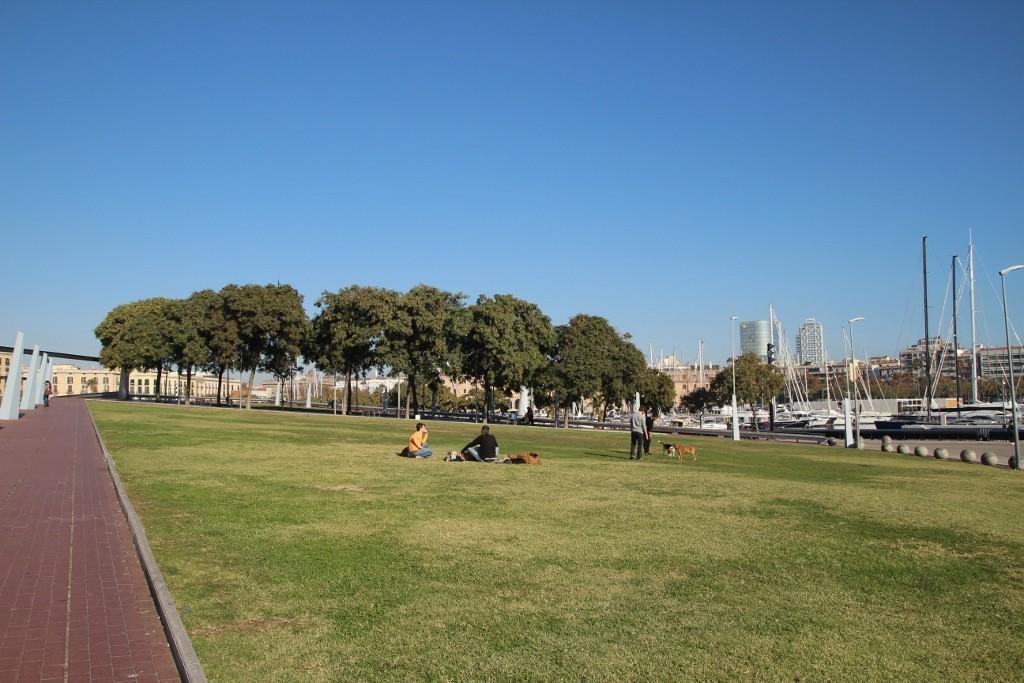 El Barceloneta (66)