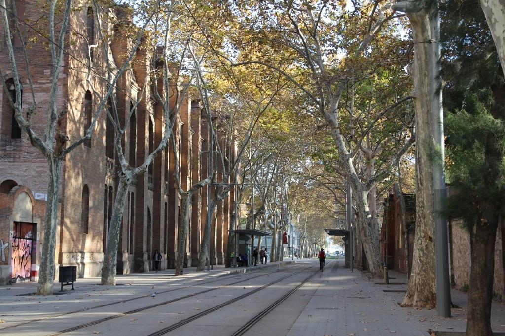 Parc de la Ciutadella (101)