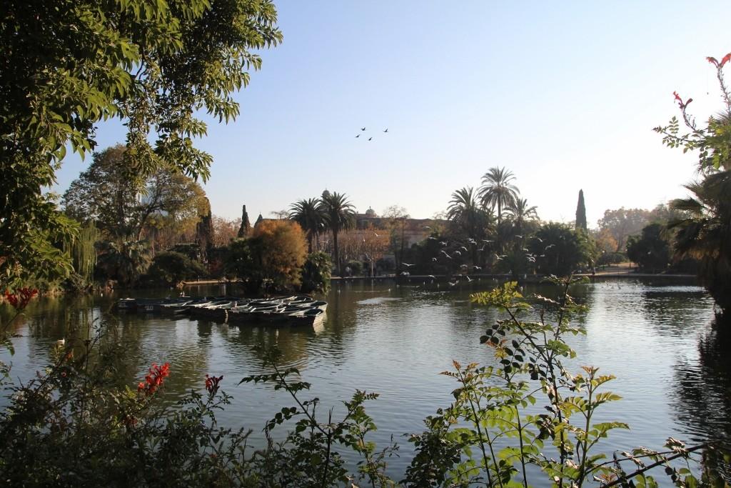 Parc de la Ciutadella (171)